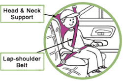 Child Safety Seat Image 3